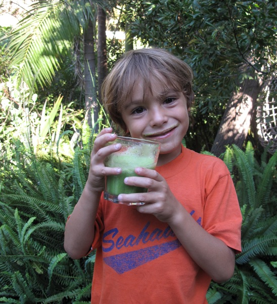 Kids Green Smoothie The Green Smoothie for Kids